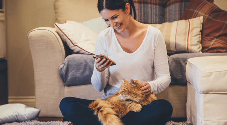 Cat News & Information